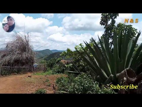 Hmong new nkag siab yuam kev (3/7/2020)