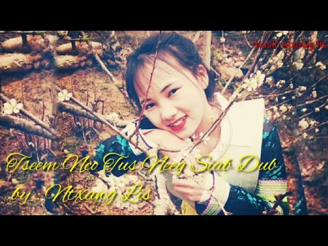 Ntxawg lis - tseem nco koj tus neeg siab dub _ hmong new song 2020 2021 officiall