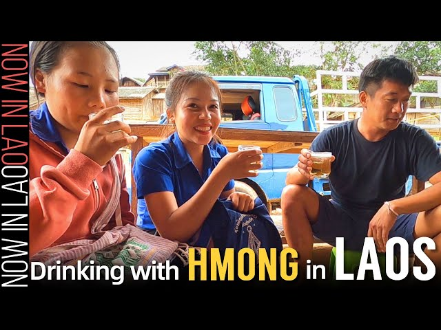 HMONG PEOPLE at Their BEST!   Hmong Food Hmong Drink Hmong Friends ❤ Now in Lao 2020